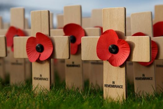 Peace organizations hope to restore Armistice Day, also known as Poppy Day and Remembrance Day, as a day for celebrating peace. It was renamed Veterans Day in 1954. (Petr Kratochvil/Public Domain Pictures)