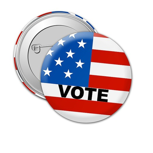 Florida overwhelmingly voted in favor of Amendment 4 on giving previously disenfranchised persons with felonies the opportunity to vote. (TheDigitalArtist/Pixabay)<br />