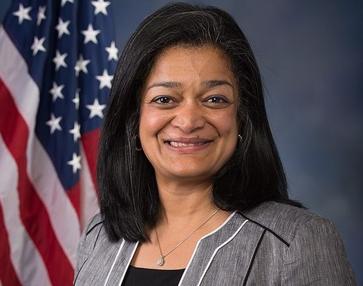 Rep. Pramila Jayapal, D-Wash., says domestic work makes other work possible. (U.S. House of Representatives)
