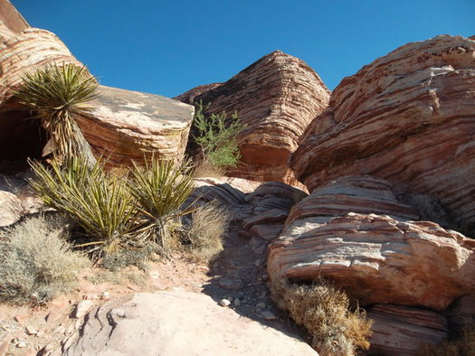 Red Rock Canyon is still open during the shutdown but the vistor center and bathrooms are closed. (Kconnors/morguefile)