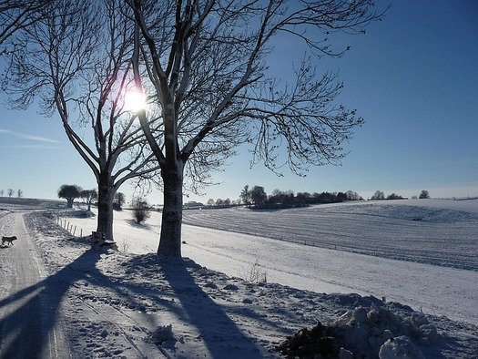 Studies show that people who struggle with depression during the winter months sometimes can improve their symptoms with frequent exposure to bright light or sunshine. (Pixabay)
