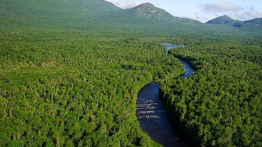Maine's North Woods, the largest undeveloped forest in the Eastern U.S., could be affected by proposed changes to a state zoning law. (ThomasRobertKelley/Wikimedia Commons)