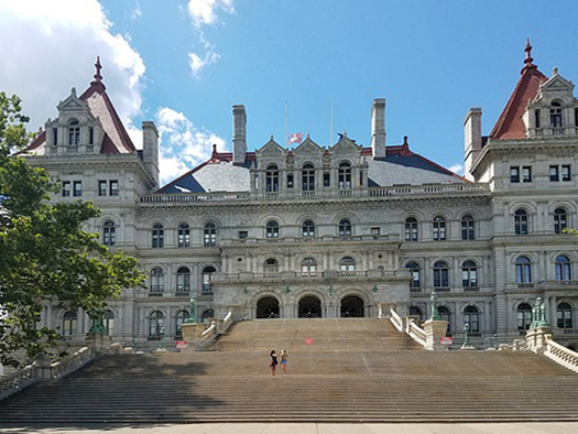 More than 30 New York state lawmakers have been forced from office for ethics violations or criminal convictions. (LoveBuiltLife/Pixabay)