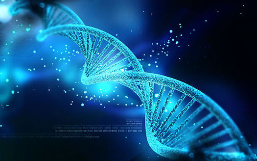 Adoption experts warn against posting personal information on social media in order to connect with family matches made through DNA tests, to avoid the risk of identity theft. (Nogas1974/Wikimedia Commons)