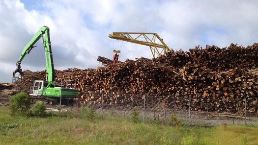 Enviva is one of the largest producers of wood chips and pellets in the world, and plans to expand production in North Carolina. (Southern Environmental Law Center)