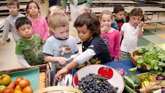 Research finds that kids retain retain lifelong healthy eating habits if they start eating nutritious food when they're young. (Lance Cheung/U.S. Dept. of Agriculture)