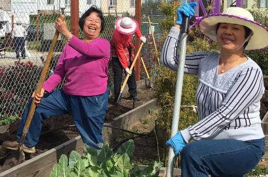The Florence Fang Asian Community Garden in San Francisco won an AARP Community Challenge grant in 2018. (Johnny Chen)