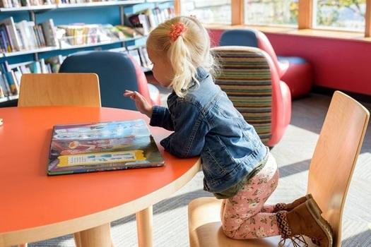 Leer en Arizona (Read On Arizona) tiene una meta a 10 a�os: que todos los peque�os de tercer grado de Arizona lean a un nivel adecuado para su edad.