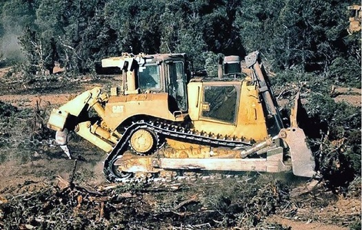 BLM bulldozers, using tools such as bullhog masticators and anchor chains, annually strip thousands of acres of native vegetation from public lands in the West. (WildUtahProject)