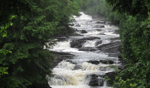 Thousands of stream miles and wetlands could lose Clean Water Act protections under an EPA proposal to change the Waters of the United States rule. (Samuel Taylor for Birth Place of Rivers)