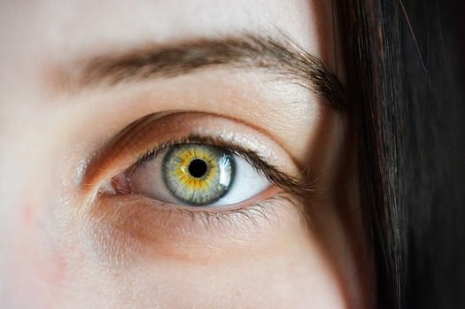 Florida's telemedicine bills would authorize providers to use telehealth to perform patient evaluations online, including eye exams. (SofieZborilova/Pixabay)
