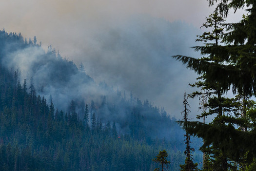 While the severity of wildfires in the Northwest has grown, a new study finds only about a tenth of the historical acreage burns each year. (LDELD/Flickr)