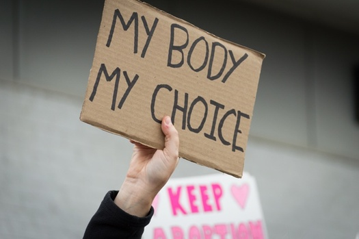 More than 290 anti-abortion bills have been filed in 45 states this year. (traci1/Adobe Stock)