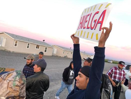 "A farmworker holds up a sign that says ""Huelga"" or ""strike"" in Mattawa, Wash. (Community to Community Development)"