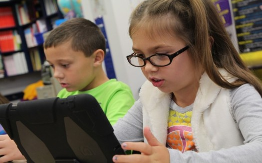 Nationwide, almost 300,000 elementary and secondary students attend school entirely online. (April Bryant/Pixabay)