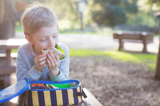 Las familias gastan aproximadamente $300 más por mes en comidas durante el verano, que durante el año escolar. (Aleksei Potov/Adobe Stock)