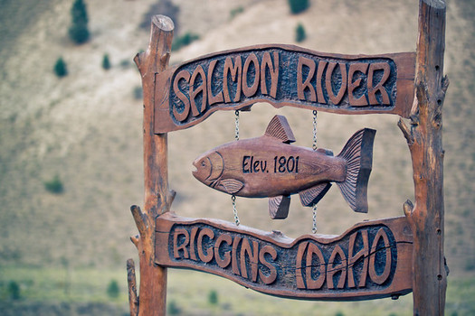 Idaho communities rely on the return of salmon and steelhead each year. (Nan Palmero/Flickr)