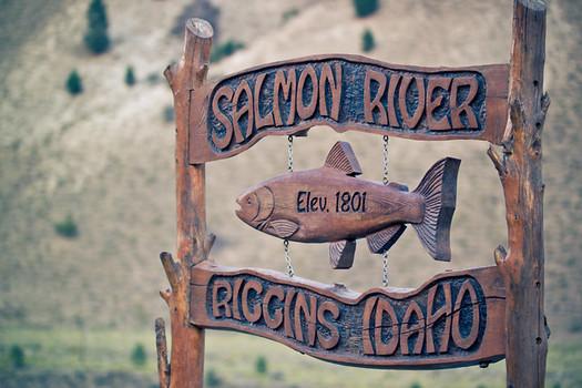Las comunidades de Idaho conf�an en el regreso del salm�n y la trucha para el a�o pr�ximo. (Nan Palmero/Flickr)