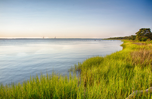 For decades, toxic chemicals known as PFAS seeped into the Cape Fear River in North Carolina, contaminating residents' drinking water supply. (Adobe Stock)