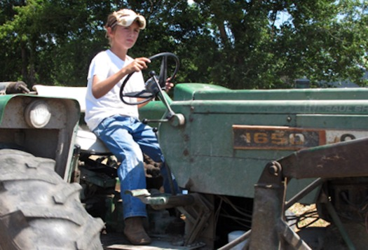 Young farmers, age 35 years or less, make up 10% of Missouri farmers while about 25% of farmers were considered new and beginning farmers, with 10 years or less of experience. (pewtrusts.org)