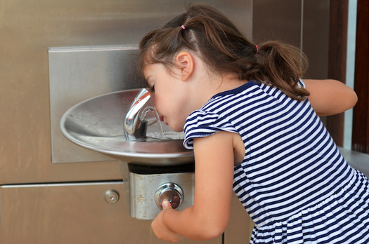 The American Academy of Pediatrics recommends lead levels in drinking water not exceed one part per billion in schools. (Rafael Ben-Ari/Adobe Stock)
