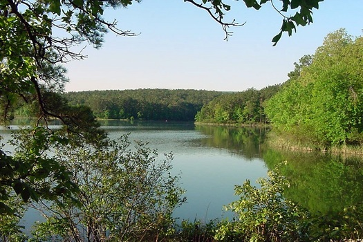 The Ouachita National Forest, which covers about 1.8 million acres in central Arkansas, is one of two national forests in the state. (U.S. Forest Service)