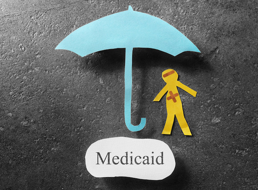 Idaho's application to add work requirements for Medicaid coverage notes the proposal could affect health coverage for 16,000 people. (zimmytws/Adobe Stock)