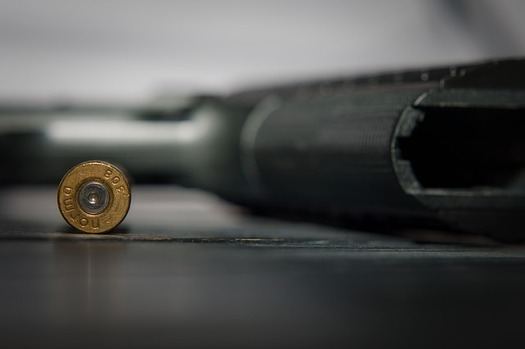 As Gov. Tony Evers calls a special session on gun control, both Assembly Speaker Robin Vos and Senate Majority Leader Scott Fitzgerald said Republicans would not take up bills that would infringe on constitutional rights to own guns. (Pixabay)