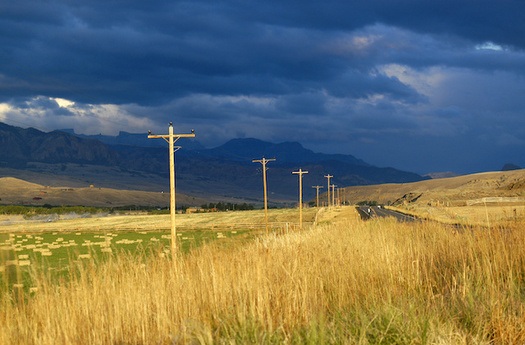 Montana has 25 electric cooperatives. One critic says co-op boards could be more representative of its members. (Guntherize/Adobe Stock)