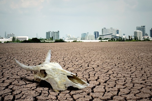 An international group of more than 11,000 scientists are warning political leaders and others that, in their opinion, the earth is in a �climate emergency.� (scottchan/AdobeStock)