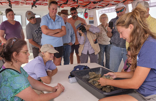 Pennsylvania farmers harvested oysters, set crab traps and tested the nitrogen content of Chesapeake Bay water during a three-day, hands-on learning experience. (Chesapeake Bay Foundation)
