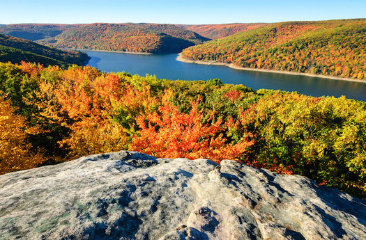The 513,000-acre Allegheny National Forest includes 25,000 acres protected under what is known as the Roadless Rule, which has been in place since 2001. (Cred Zack Frank/Adobe Stock)