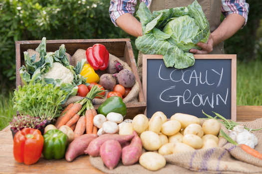 Virginia Fresh Match is a network of farmers markets and other food stores focused on providing access to fresh produce for low-income areas. (Adobe Stock)