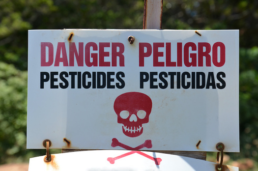 In 2016 the Environmental Protection Agency concluded that all uses of chlorpyrifos are unsafe. (hhendrix/Adobe Stock)