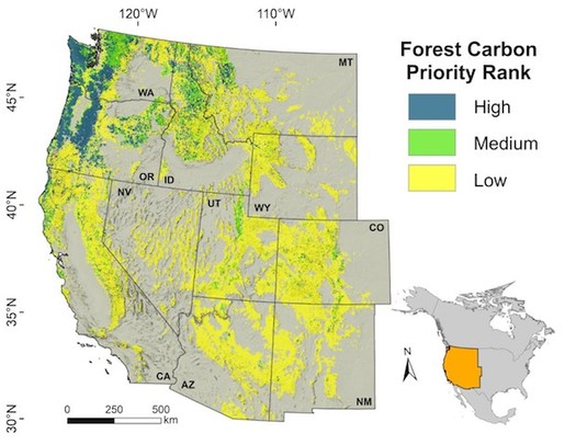 Preserving forests in the Northwest would be the equivalent of not burning fossil fuels for eight years in the Western United States, a study has found. (Oregon State University)