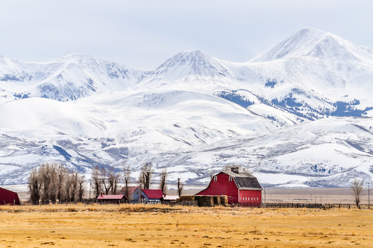 Montana farmers have received less than 1% of the federal subsidies to offset losses from the trade war. (Matt/Adobe Stock)
