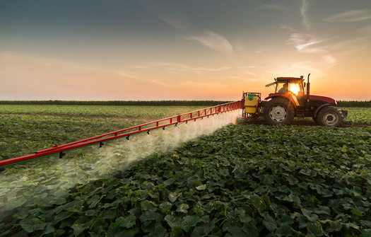 Research has shown pesticide exposure can cause birth defects, infertility and cancer. (Adobe Stock)