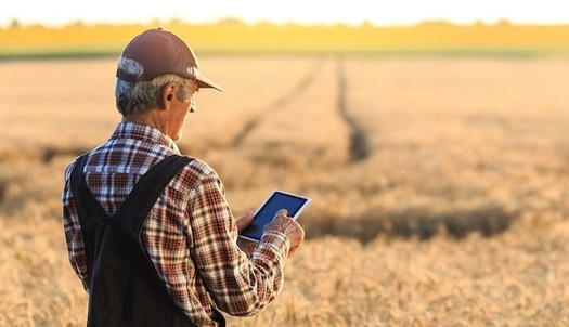 About 80% of the 24 million American households that do not have reliable, affordable high-speed internet are in rural areas, according to the U.S. Department of Agriculture. (AARP.org)