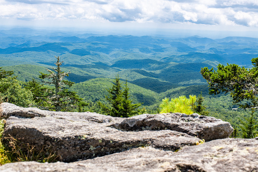 Western North Carolina is among the most ecologically rich regions in the world. (Adobe Stock)