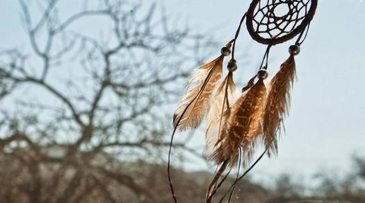 Cancer is a leading cause of death among American Indian populations, but palliative care in South Dakota is often a long drive from the state's Indian reservations. (aamc.org)