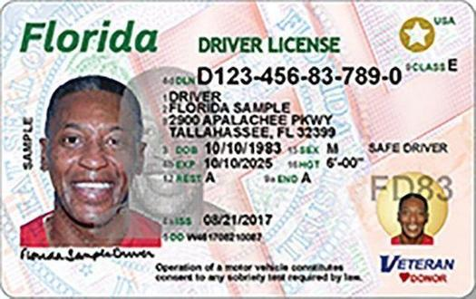 Florida could join six other states, including Kentucky and Mississippi, that have eliminated their driver licenses suspension penalties. Texas and Georgia are considering it, too. (Florida Dept. of Motor Vehicles)
