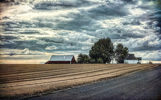 Farmers across Oregon believe climate change is hurting them financially. (Sheila Sund/Flickr)
