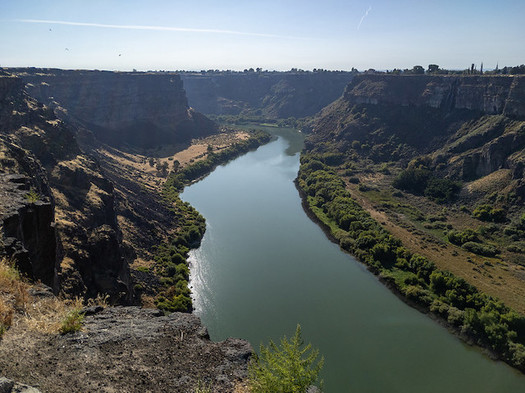 Salmon and steelhead return numbers on the Snake River have plummeted in recent decades. (Matthew Dillon/Flickr)