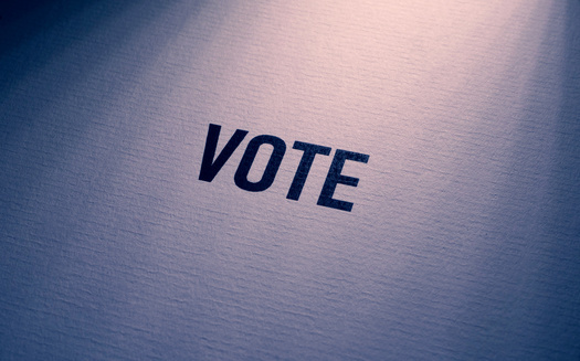 In 2018, Minnesota led the nation in voter turnout, but Latino advocates say there's still a racial gap in participation. They say that could be in part because Latinos often feel ignored by candidates. (Adobe Stock)