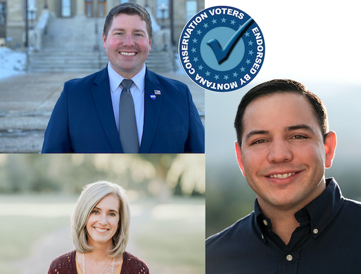 Montana Conservation Voters is supporting candidates who will sit on the Land Board that favor protecting public lands. (Montana Conservation Voters)