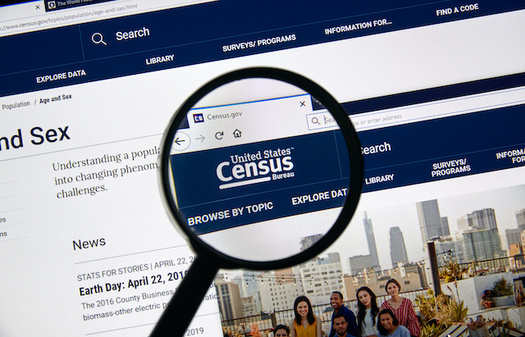 The 2020 census can be filled out online this year. (dennizn/Adobe Stock)
