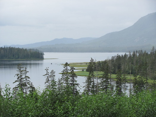 A timber harvest plan would have covered 1.8 million acres of land on Prince of Wales Island in the Tongass National Forest. (Steve Sadowski/Flickr)