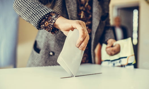 Groups want to move local elections in Virginia from May 5 to Nov. 3. (Adobe stock)