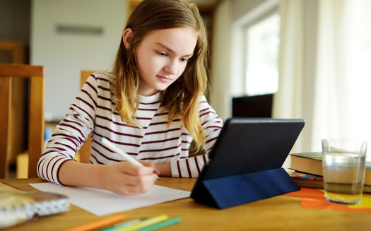 Minnesota's nearly 900,000 K-12 students have gotten their schooling mostly online since late March. (Adobe Stock)