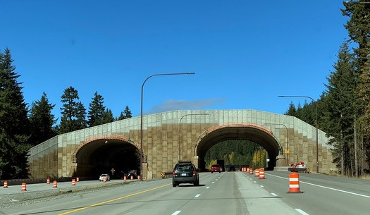 The Washington State Department of Transportation has completed a wildlife crossing on I-90 near Snoqualmie Pass. (WSDOT/Flickr)